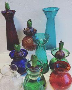 Atelier Krogbeck, Hyacint 1
