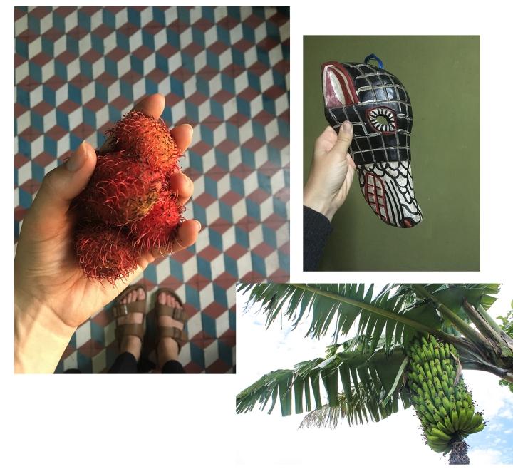 Guate, blandet