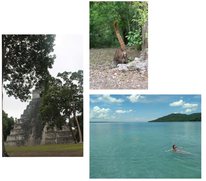 Guate, Tikal